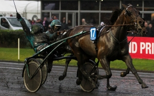 Maharajah driven by Orjan Kihlstrom winning the 2014 edition of the Gran Prix d'Amerique at the Vincennes Race Track in Paris.